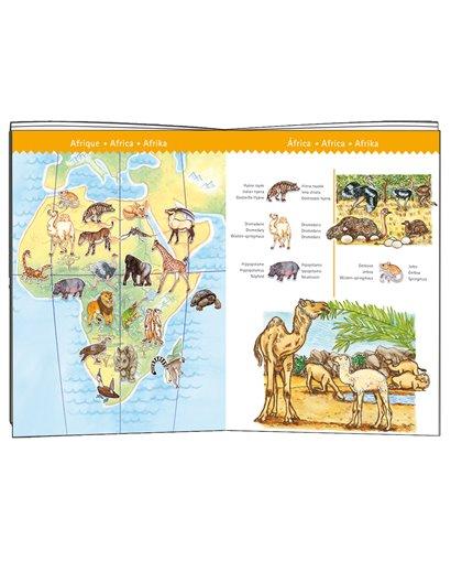 Puzzle Observación - Los Animales del mundo - 100 pcs